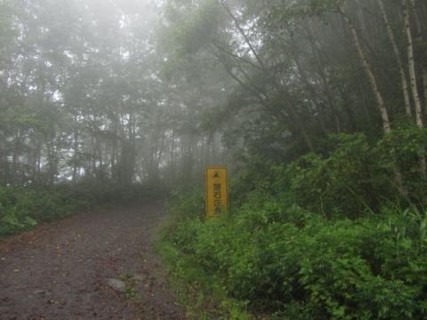 函館山千畳敷コース