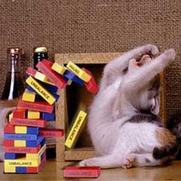 ジェンガで失敗した猫