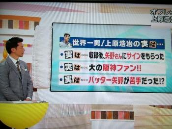 絵日記1・13ヤノスポ10