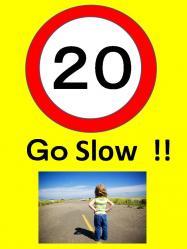 GO SLOW2