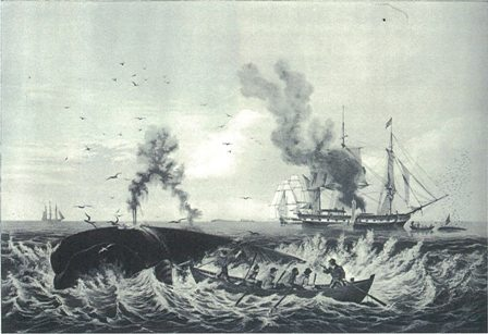 http://blog-imgs-57.fc2.com/t/o/r/toriton/Whaling_Boats.jpg