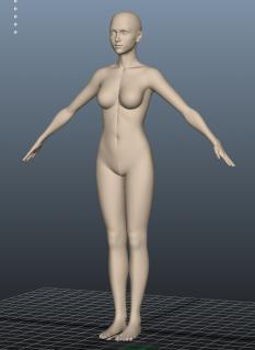 body_02.jpg