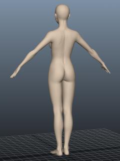 body_03_20130407224253.jpg