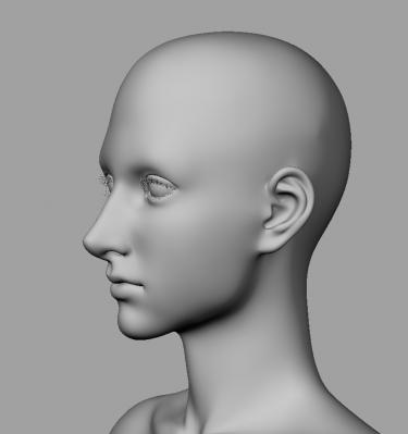 model_image_003.jpg