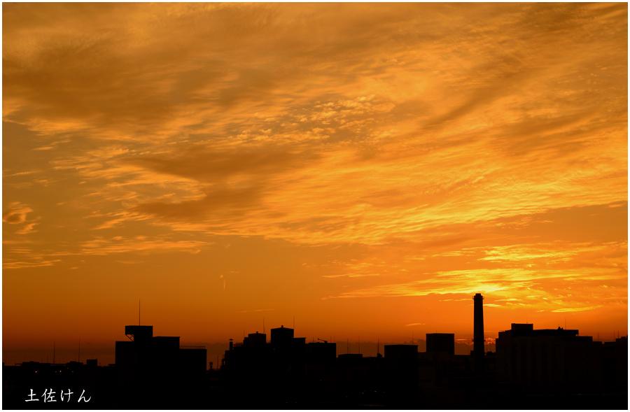 安治川大橋からの夕景3