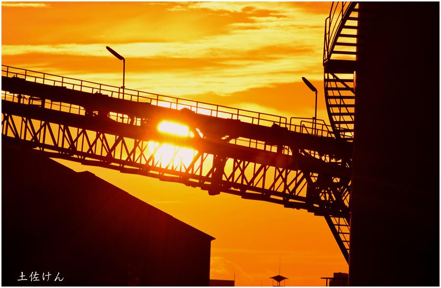 安治川大橋からの夕景4