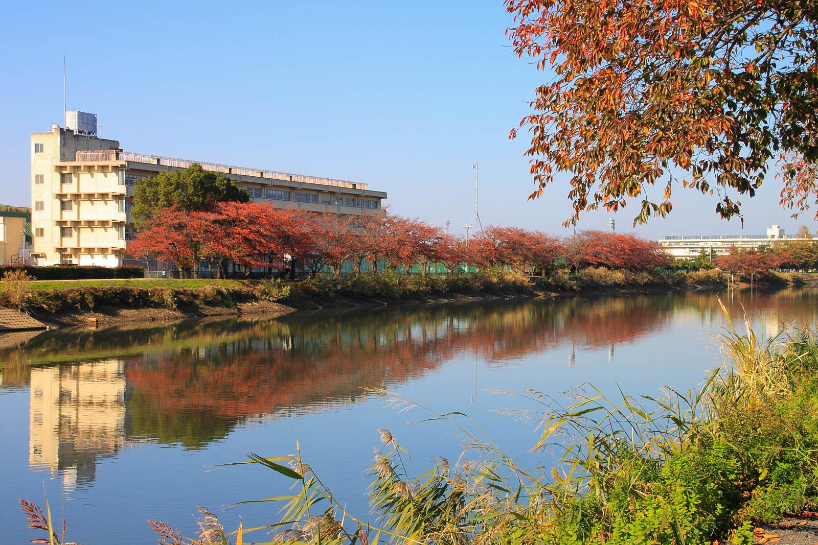 2013年11月16日 首都圏外郭放水路_003