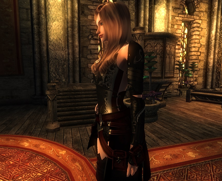 Battle Princess Armor 3