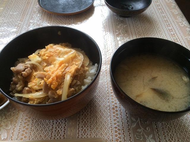 親子丼の昼1