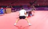 許昕と樊振東の練習 世界卓球2013パリ