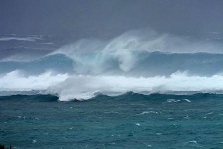 東海岸の波濤