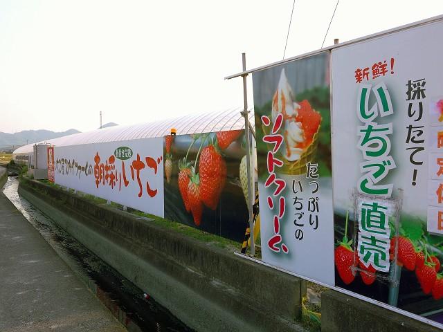 0503-itigoya-008-S.jpg