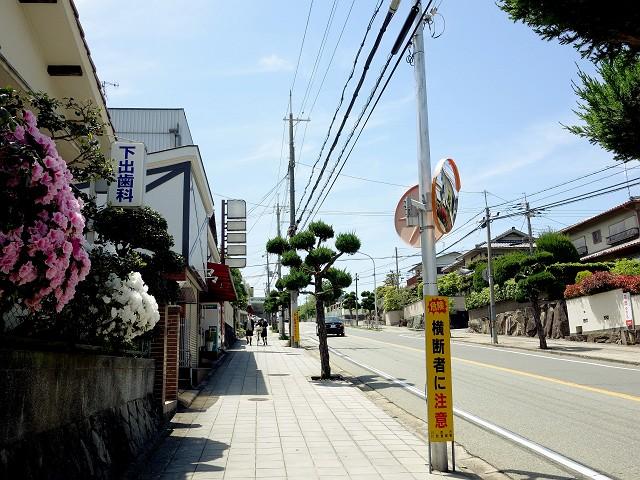0512-sansan-010-S.jpg