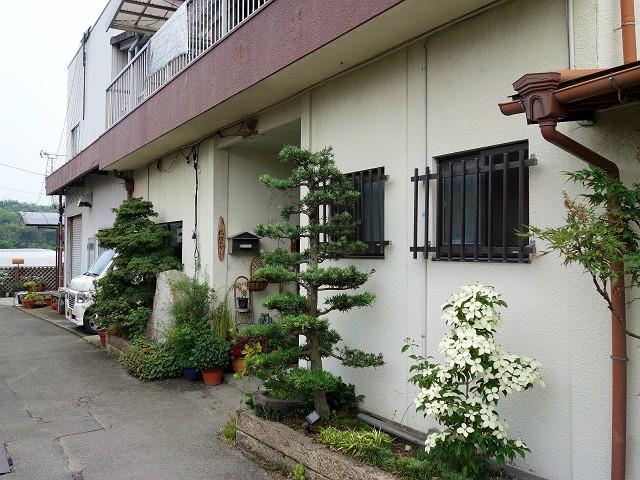 0622-hasimura-002-S.jpg