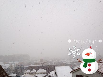 2014_2_4_snow.jpeg