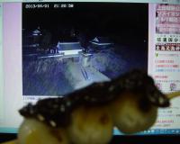上田城跡公園ライブカメラ