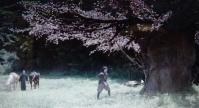 『雷桜』・『最後の忠臣蔵』共に女優さんの演技に拍手!!