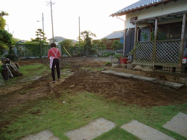 庭木・庭石移動完了