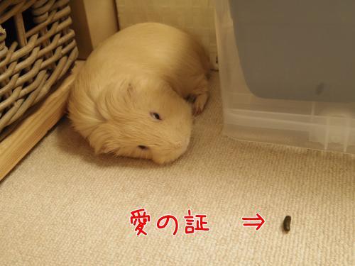 しおんちゃんとデート5