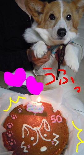 毎日がお誕生日(1)(1)