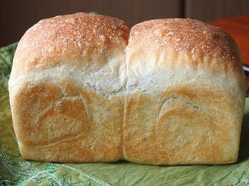 トーストブレッドアヴァロン1