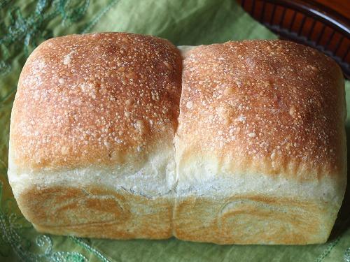 トーストブレッドアヴァロン8