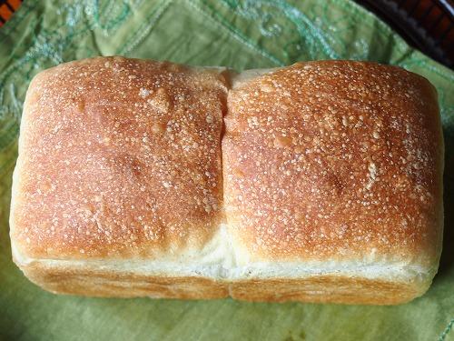 トーストブレッドアヴァロン2