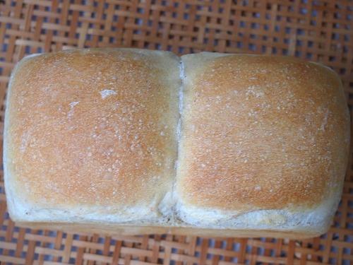 トーストブレッドとパンサラダ3