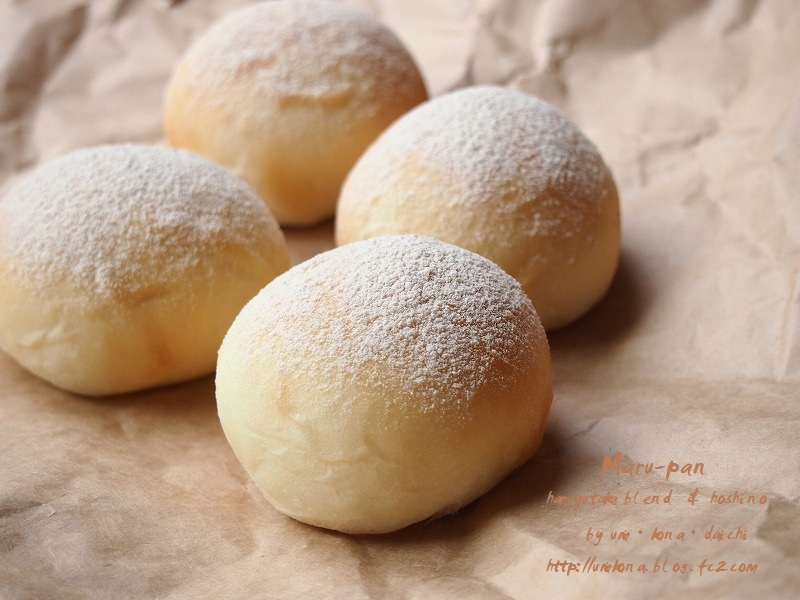丸パン ホシノVS.レーズン酵母9