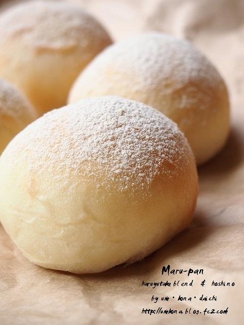 丸パン ホシノVS.レーズン酵母1