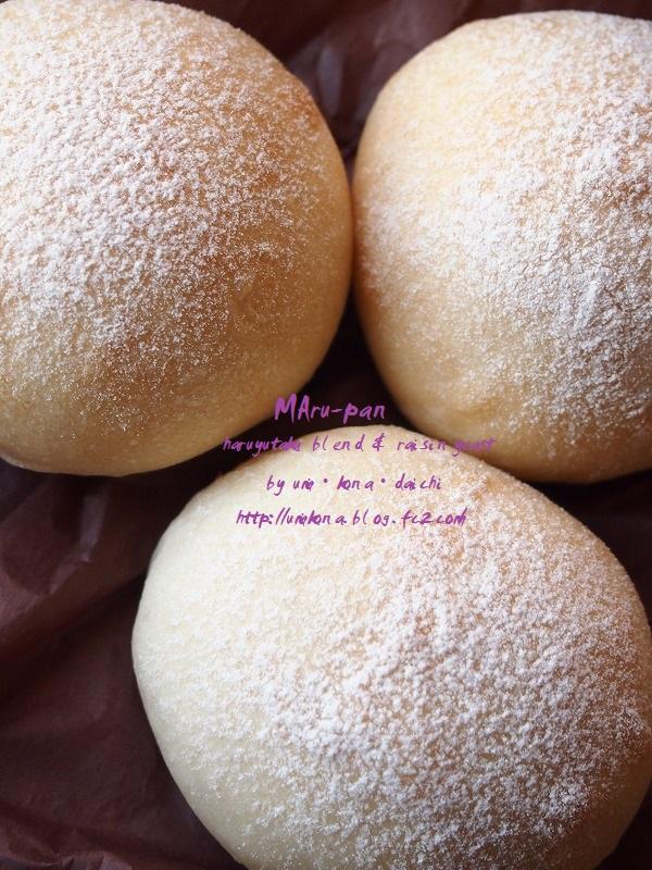 丸パン ホシノVS.レーズン酵母レーズン1