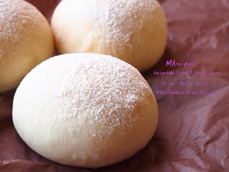 丸パン ホシノVS.レーズン酵母レーズン6
