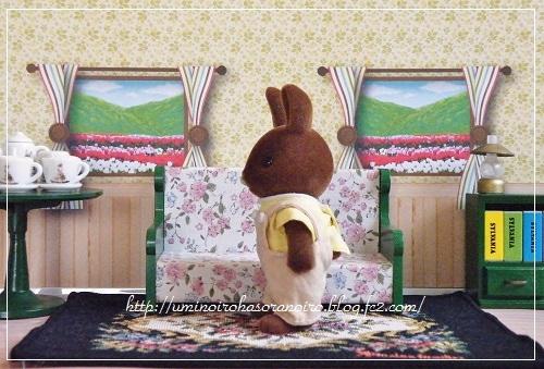 ブラウンウサギ父2