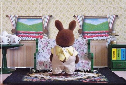 ブラウンウサギ父3