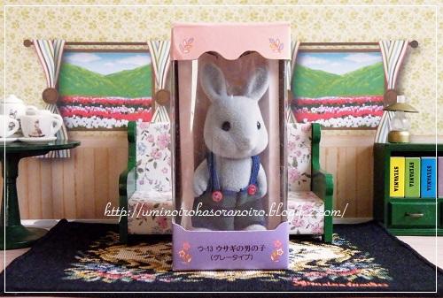 ウ-13グレーウサギ男の子