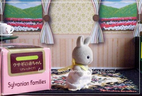 グレーウサギの赤ちゃん