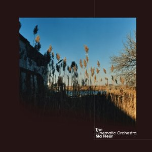 THE CINEMATIC ORCHESTRA「MA FLEUR」