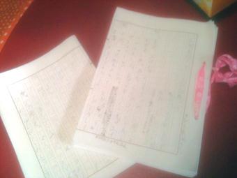 ヒヨコ、原稿用紙に夢中です。