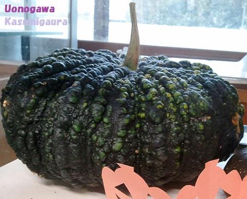 2014-10-10kabocha