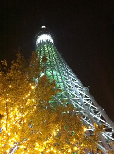 IMG_5286urabanashi.jpg