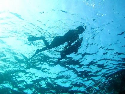 秋の沖縄那覇市で人気インストラクターによる激安おすすめダイビング
