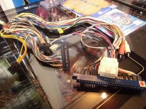 CIMG7181 (800x600)
