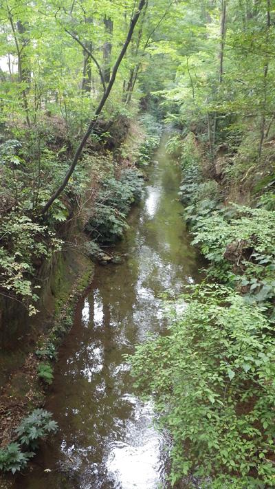 玉川上水を歩く