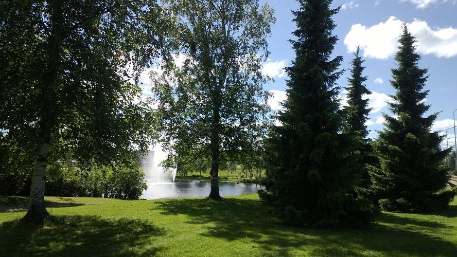 川辺の風景130618