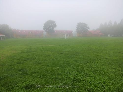 ミルクランドの霧