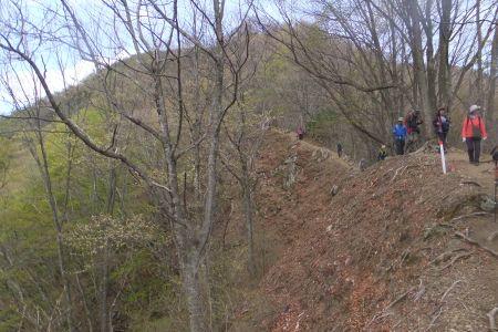 下山路の崖