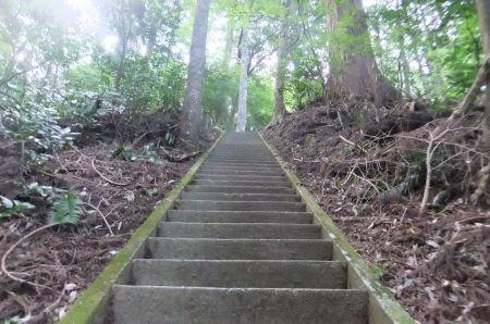 道了尊の階段