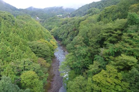 桂川を渡る