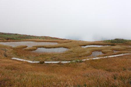 湿原と池塘