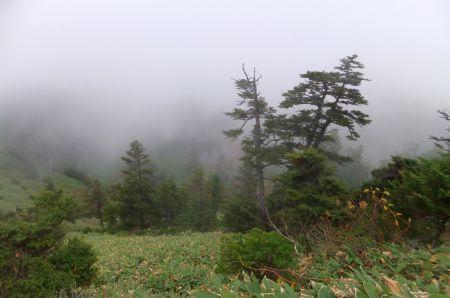 志賀山の登り
